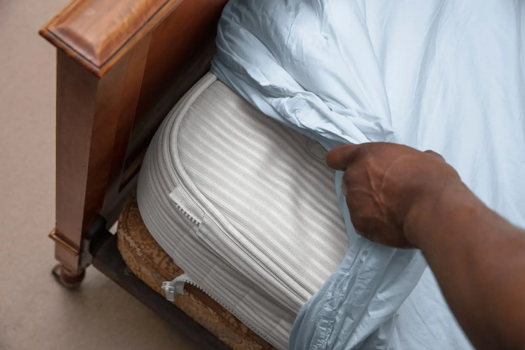 BEd Bug Shield Image